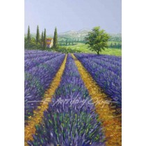 An Afternoon in Provence