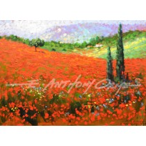 Poppy Fields, Provence